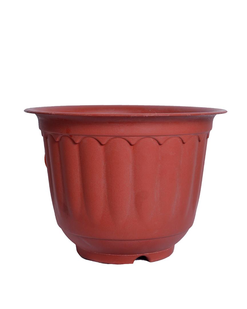 "Jasmine 10"" Pot"
