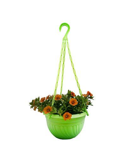 Cutecaali Melon (Hanging Pot)